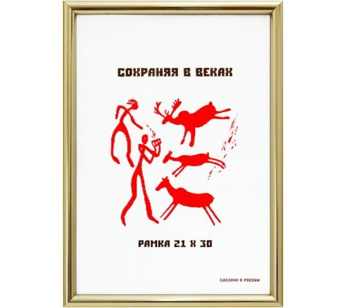 Ф/Рамка MN 21*30 пластик золотой (31)